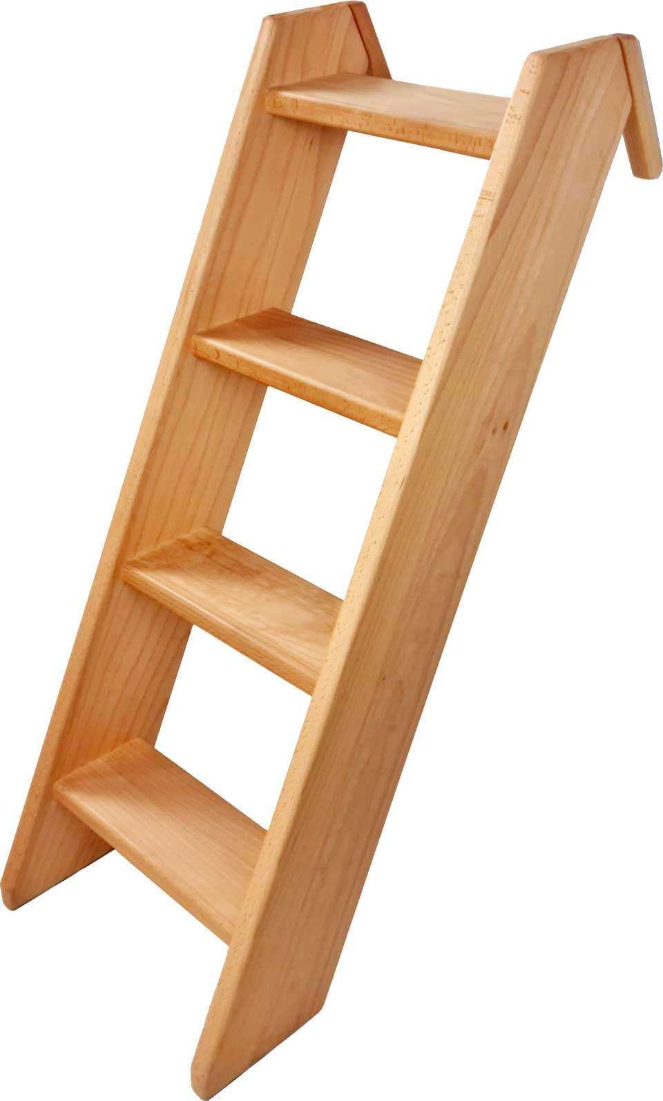 Inclined Ladder